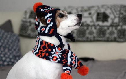 Przygotowani na mroźną zimę?