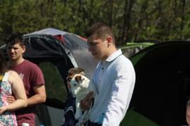 Krajowa Wystawa Psów Rasowych - Jasło 2018 - Jack Russell Terrier (3)