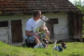Jacks4You Majówka, Jack Russell Terrier (22)