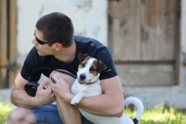 Jacks4You Majówka, Jack Russell Terrier (55)
