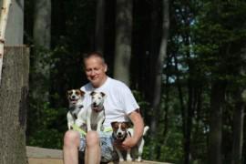 Jacks4You Majówka, Jack Russell Terrier (7)
